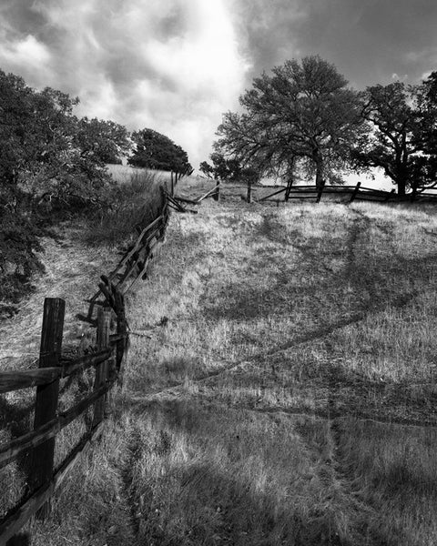 Crooked Fence, Mt. Diablo- Contra Costa, CA