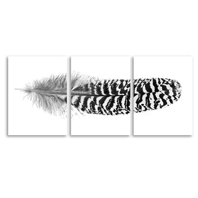Feather #13 (Mottled Peacock Wing Quill) Trilogy