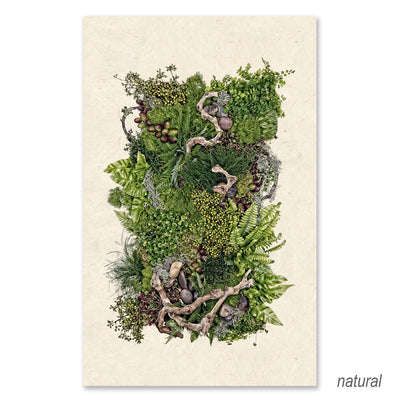 Forest Floor (collective ferns) GRAND FORMAT