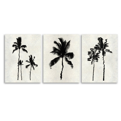 Palm Reflections Trilogy