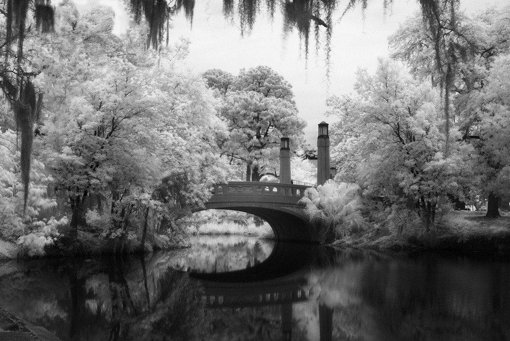 Southern crossing city park new orleans la 30 00 this black and white
