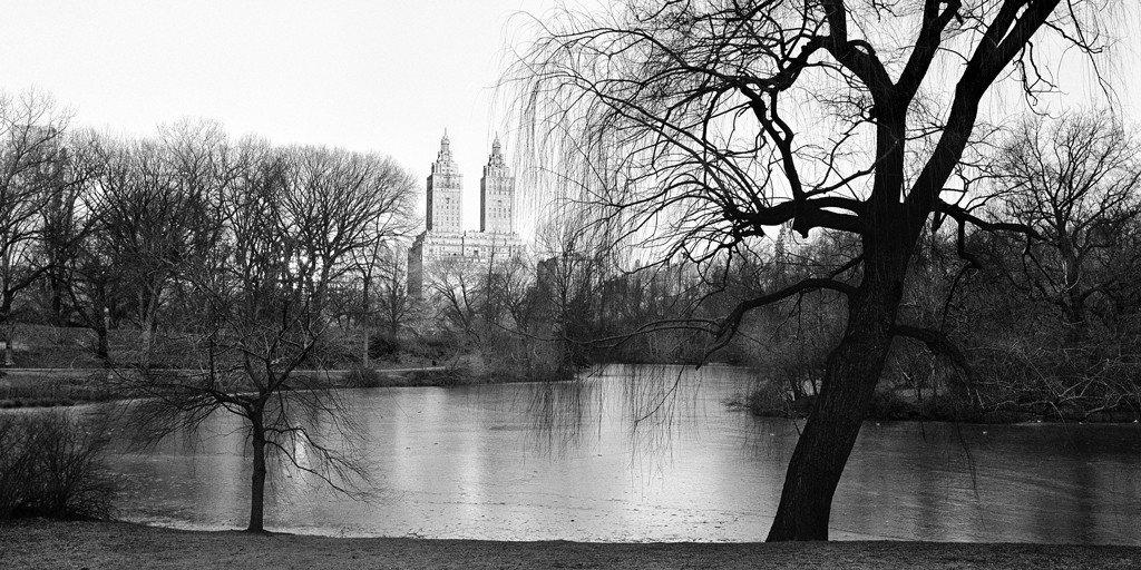 Black And White Photo Of The Pond In Central Park New York