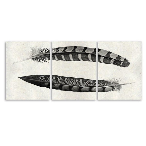 Two Curved Feathers Trilogy Horizontal