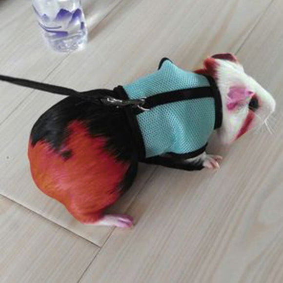Harness And Leash Set Ferret Guinea Pig Walking