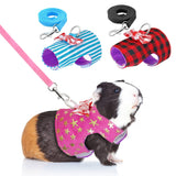 Small Pet Harness and Leash Set