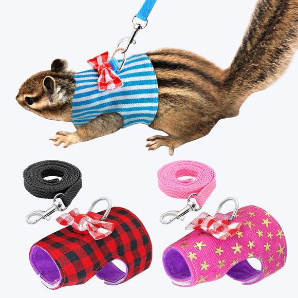 Harness & Leash for Ferret & Small Pet Walking