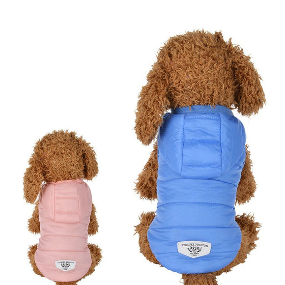 Clothes For Dog