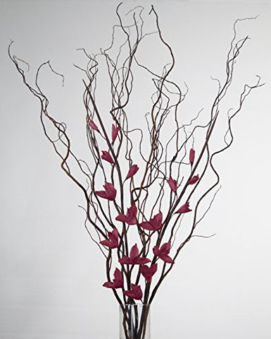 Curly Willow with BURGUNDY Sword Lilies