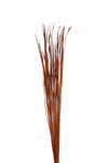 Wide Tall Grass (full pack), Burnt Oak - 50 pieces