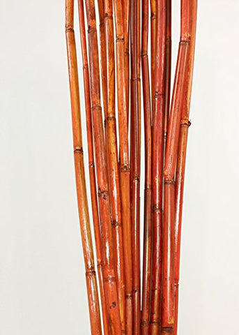 Green Floral Crafts | Natural River Cane 3.5 Ft, 3-Tone Brown, Pack of 15