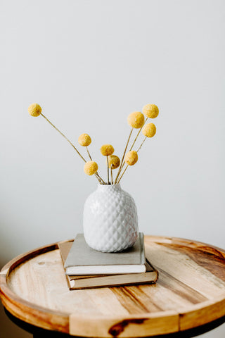Craspedia Billy Buttons - Natural Yellow
