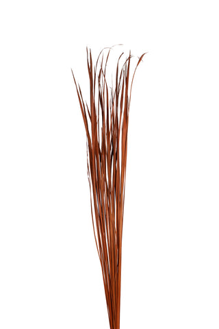 Wide Tall Grass (1/2 pack), Burnt Oak - 25 pieces
