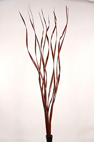 "Natural Palms Twist 40"" Tall Wavy Stems (Curly Branch Sticks) Caspia, Millet - Brown"