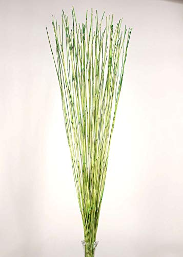 Decorative Reed Sticks - Lemon Lime Green