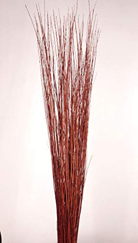 4-5 ft Burnt Red-Orange Asian Willow Stems