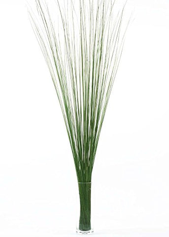 "Whispies | Nearly 5 ft Tall (57"" Stems) 