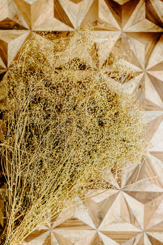 Gypsophilia | Dried Baby's Breath | Sparkle Gold