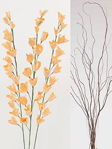 DIY Curly Willow with Peach Lily Blossoms