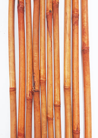 Green Floral Crafts | Decorative Bamboo Poles 3.5 Ft. | Light Burnt Orange | 10 Bamboo Sticks