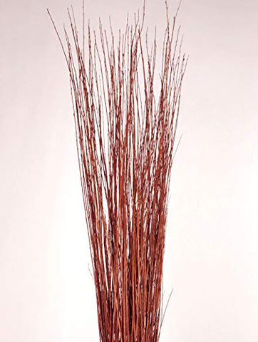 3-4 ft Tall Burnt Red-Orange Asian Willow, Bunch of 50-60 Tall Sticks (Vase Not Included)
