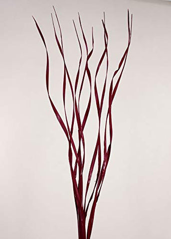 "Natural Palms Twist 40"" ft Tall Wavy Stems (Curly Branch Sticks) Caspia, Millet -Red"