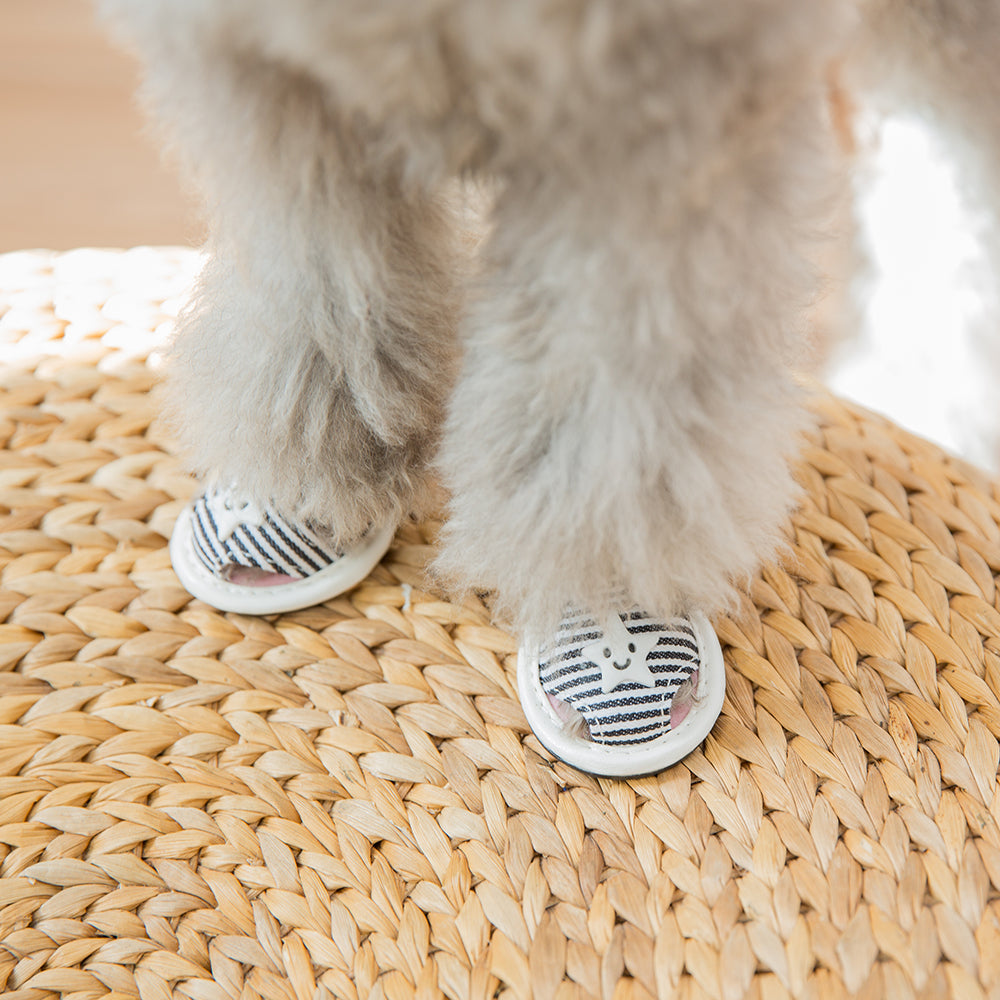Dog Summer Shoes with Anti Paw Burn