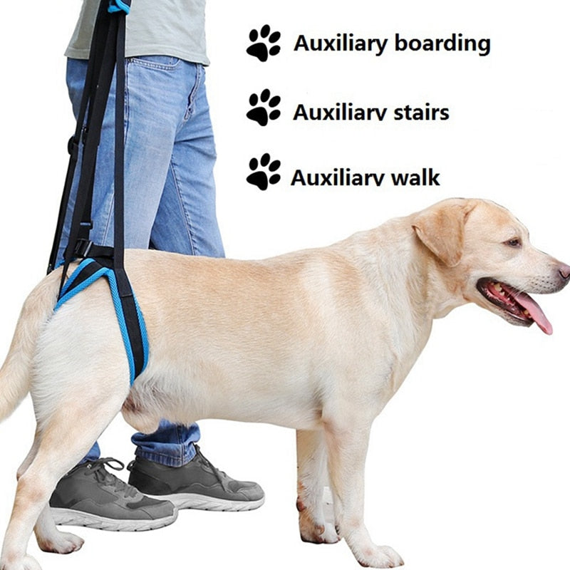 Pet Support Sling Aid Assist