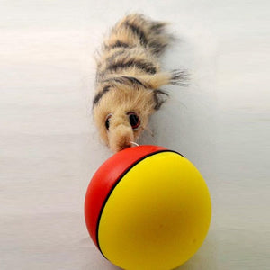 Self Rolling Ball with Beaver