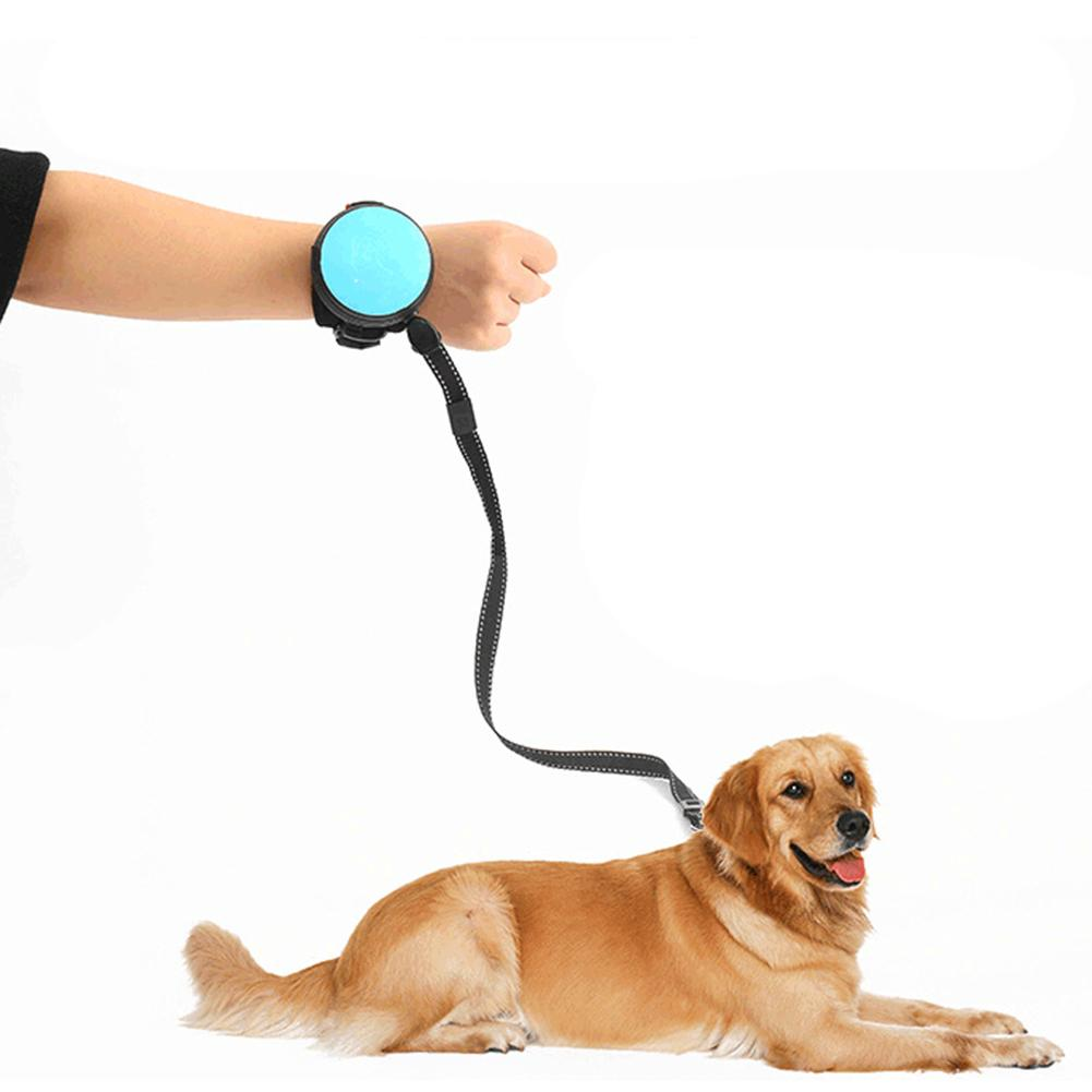 Handsfree Dog Leash