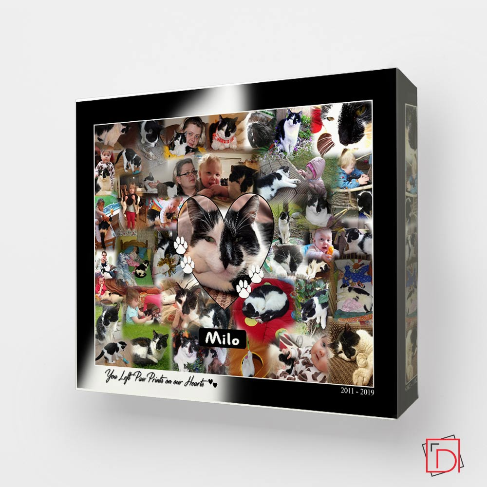 Pet Memorial Photo Collage On Canvas