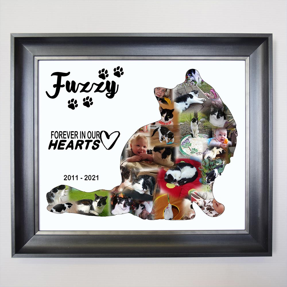 Our Little Pet framed Photo Collage
