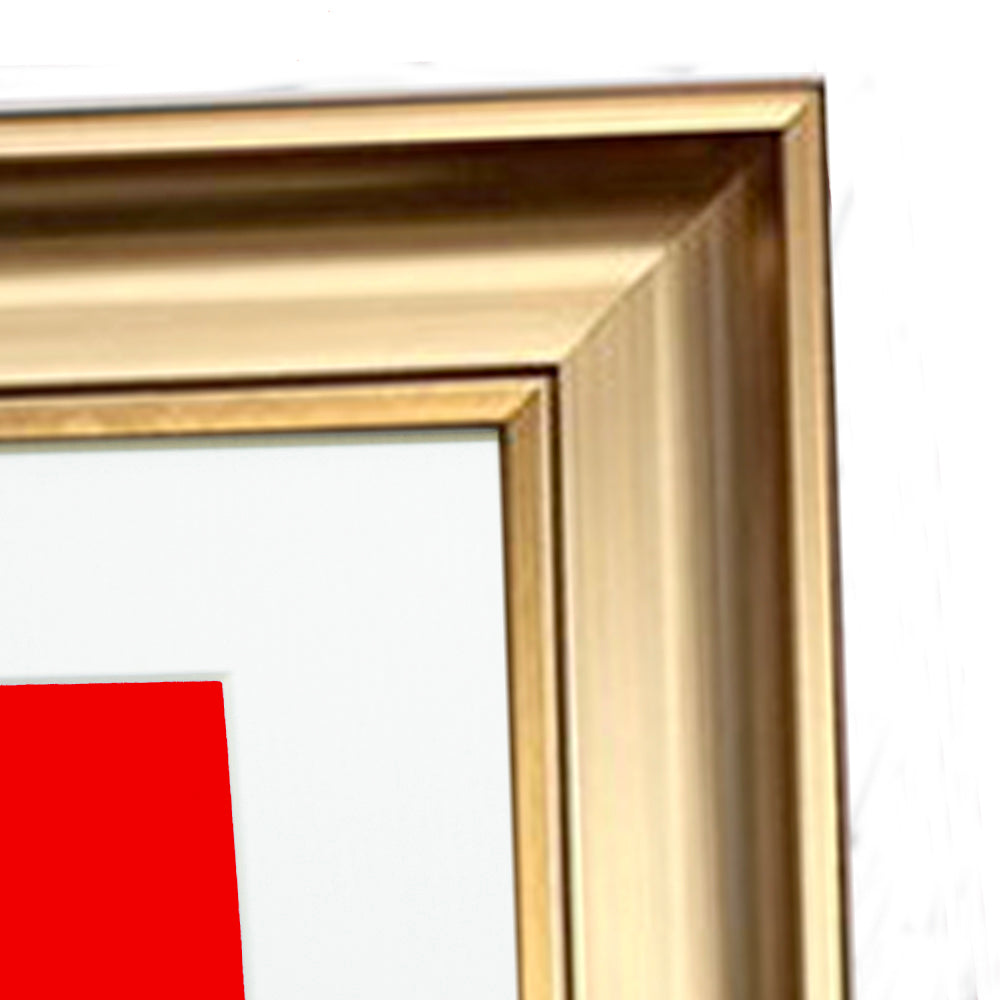 Mounted Elegance Gold Photo Frame Various Sizes
