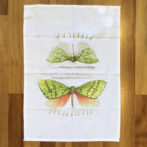 Puriri Moth Tea Towel