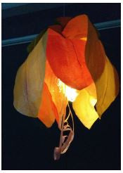 Hanging Flowers Saturday 14th September - Lights on Bikes