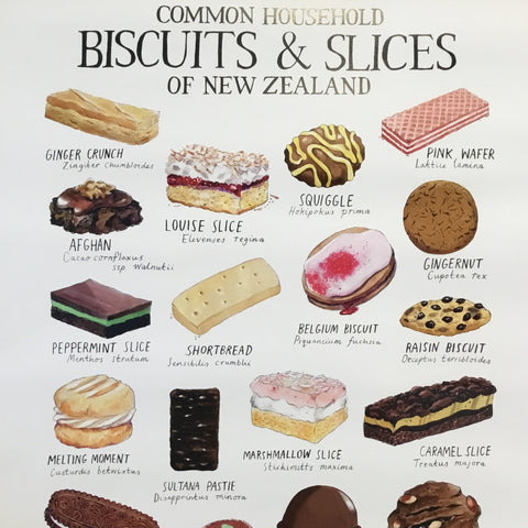 Common household biscuits & slices of New Zealand Poster
