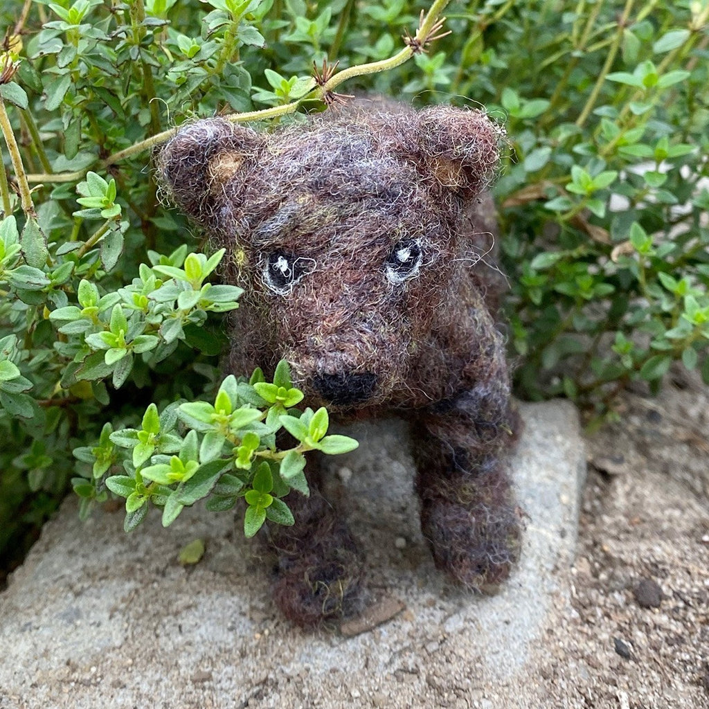 - ONLINE CLASS - Needle Felted BEAR with Jennifer McCarthy (10/17)