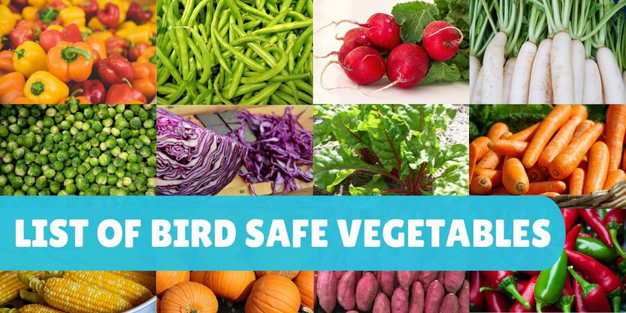 List of safe vegetables for parrots