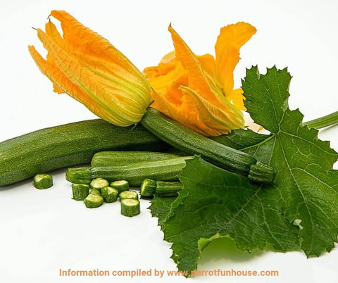Courgette zucchini safe for parrots