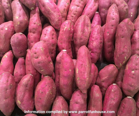 Sweet potato safe for parrots