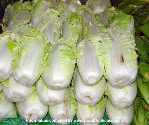Chinese cabbage leaf safe for parrots