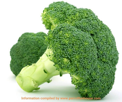 Broccoli safe for parrots