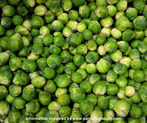 Brussels sprouts safe for parrots