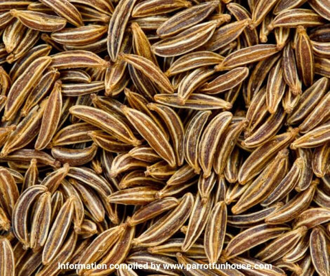 Caraway seeds safe for birds