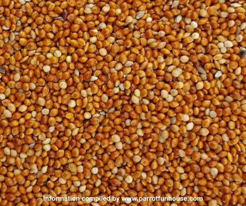 Red millet seeds safe for birds