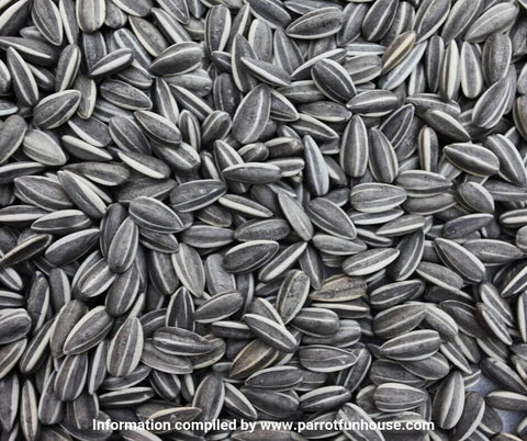 Striped sunflower seeds safe for birds