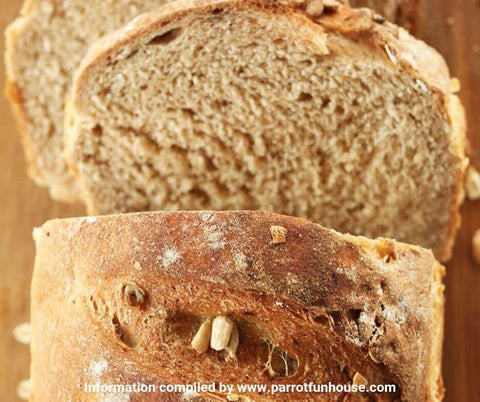 Whole wheat bread safe for birds