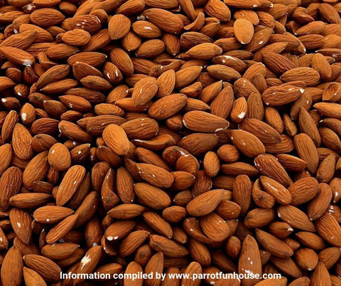 Almonds safe for parrots