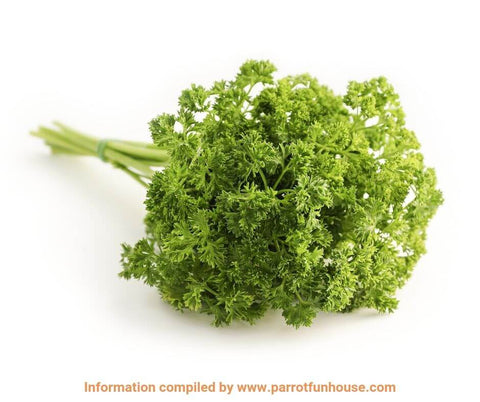 Parsley safe for parrots