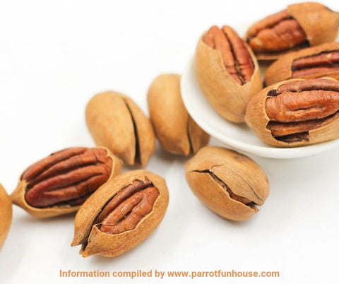 Pecan nuts safe for parrots
