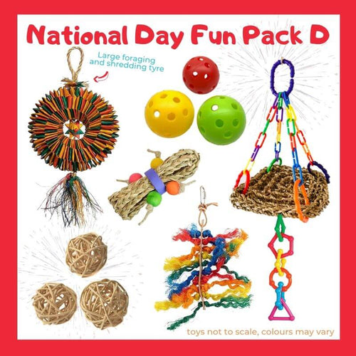 Limited Edition Bird Toy Fun Pack D